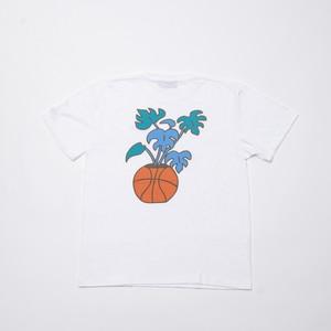 CRATE × Toyameg Basket Tree