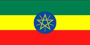 エチオピア モカ 500g