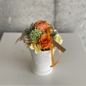 Preserved flowers -orange-