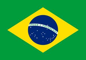 ブラジル(樹上完熟)/200g