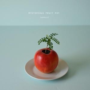 mysterious fruit pot (apple)パキプス
