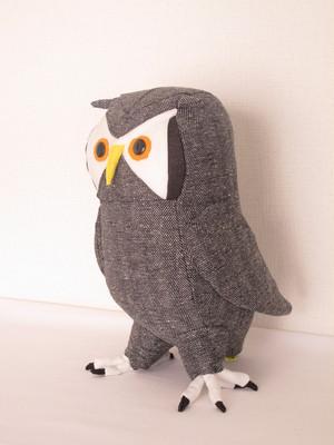 アフリカオオコノハズク owl