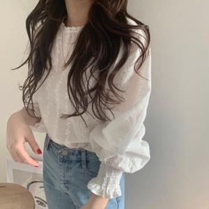 Lace  Lantern Sleeve Shirt T672