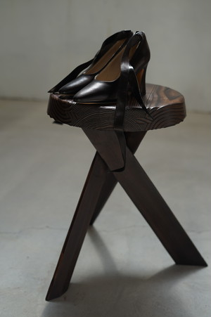 Maryam Nasser Zadeh - BERTRAND PUMP CALF