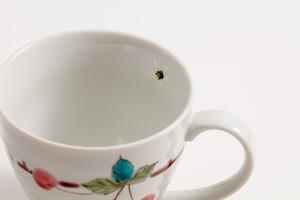 お届けは1月20日頃となります。 九谷フェス マグカップ 姫りんごSALE-8