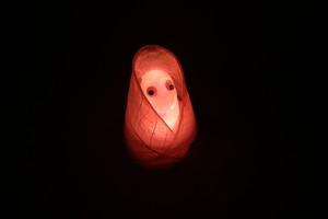 Healing lamp 蓑虫君