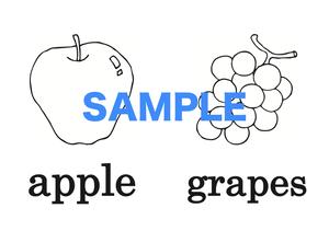 Fruits 絵+英単語 フラッシュカードデータ(白黒)