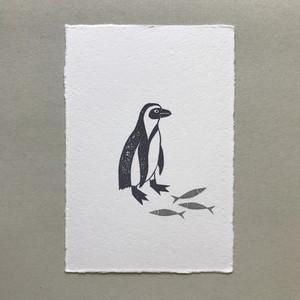 postcard (penguin)