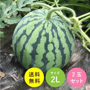 送料無料!熊本県植木産すいか(2L)2玉セット
