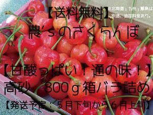 さくらんぼ【高砂・送料無料】800g箱 バラ詰め ≪予約販売≫