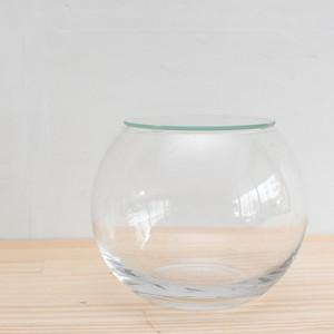 【ガラス容器】インテリアボールL(口径100xh115mm) ◆苔の寄せ植えに