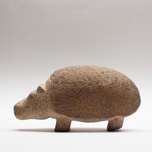 カバ Hippo