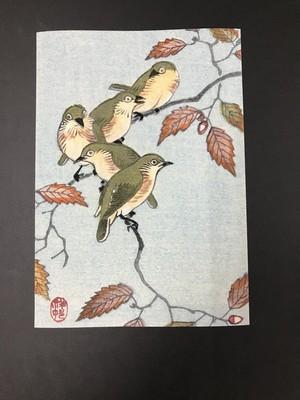 ビンテージプリント 木の上の鳥