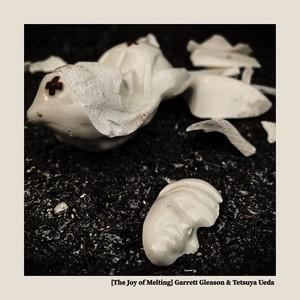 The Joy Of Melting / Garrett Gleason + ウエダテツヤ