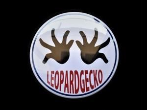 レオパバッジ hand 100mm
