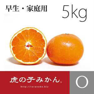 【2019年12月上旬発送】虎の子みかん・早生【家庭用5kg】