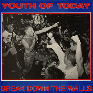 Youth Of Today - Breakdown the walls LP