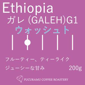 エチオピア ガレ(GALEH) G1 ウォッシュド【ハイロースト】200g