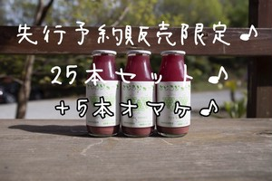【25本セット】【+5本オマケ】♪web限定♪ぶどうジュース(デラウェア)180mL