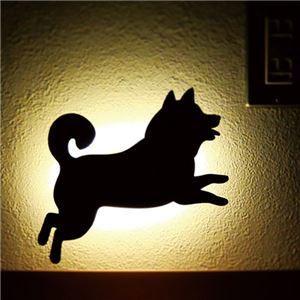SHIBA WALL LIGTH/LED照明 【1 ジャンプ】【2個セット】 音感センサー内蔵 自動消灯
