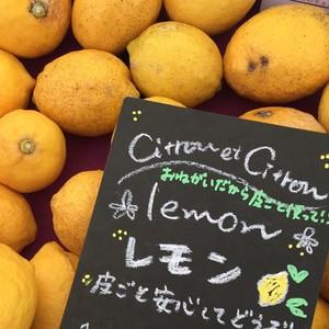初夏の柑橘3種3㎏+レモン2㎏BOX