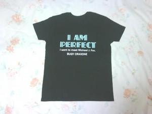 PERFECT Tシャツ