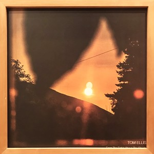 Tom Ellis ‎– From The Cabin Above The Clouds (2LP)