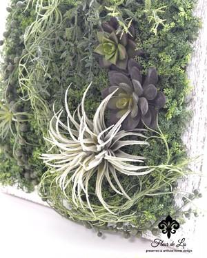 多肉植物のウッドフレーム A4