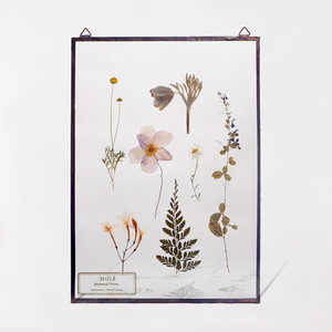 Botanical Frame L016 - Copper