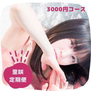 【里咲定期便】3000円コース