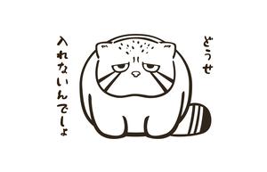 エコバッグSサイズ★マヌルネコ