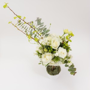 seasonal topiary Arrangement white