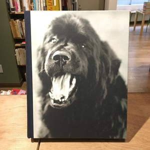 GENTLE GIANTS A Book Of Newfoundlands / Bruce Weber(ブルース・ウェーバー)