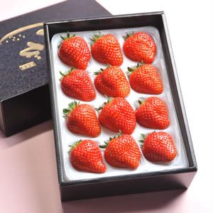 【Premium】大粒うまいちご ―雅― ※販売期間終了時期は未定です