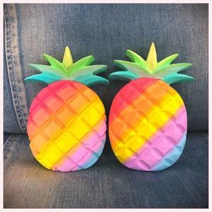 Big Rainbow Pineapple