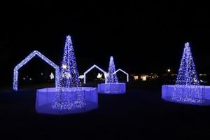 冬の夜の美しいイベント『しあわせ回廊 なら瑠璃絵2016』 イルミネーション 奈良公園