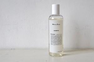 Botanique Shampoo / MATIN et ÉTOILE