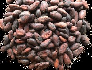ブラジル カカオ77%  Bean to Bar チョコレート