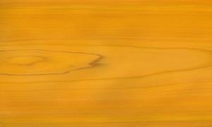 桧ツキ板 板目 0.6mm厚 30*21cm 染色黄