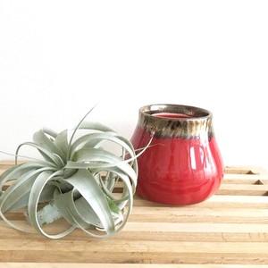 一点物【Anastasia】ビジョンブラッドの花器 陶器