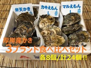 【送料込‼】厚岸かき3ブランド食べ比べセット(各8個)【大特価‼】