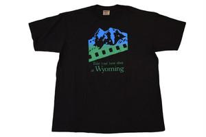USED USA製 ONEITA Wyoming T-shirt  80s 90s  XL