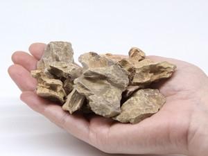 気孔石(150g)《苔テラリウム・コケリウム用》