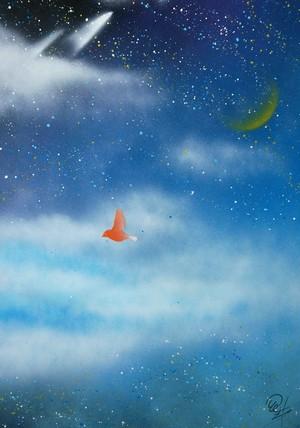 『夜空』星たちの世界。