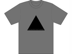 Split endは日本語で枝毛と言いますTシャツ グレー