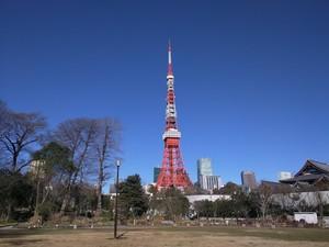 あなただけのパワースポットin TOKYO