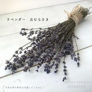 香るラベンダー 3種類 大束仕様 <ドライフラワー>