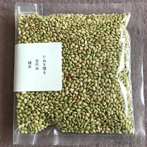 緑米 500g 埼玉県比企郡小川町青山地区 横田農場【古代米】