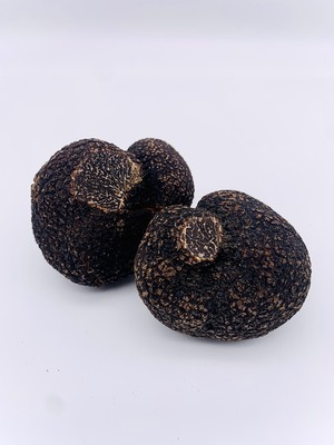 FRESH BLACK TRUFFE(30g)