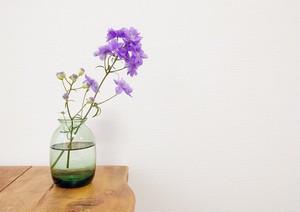 Amelie Glass アメリーグラス B-GR